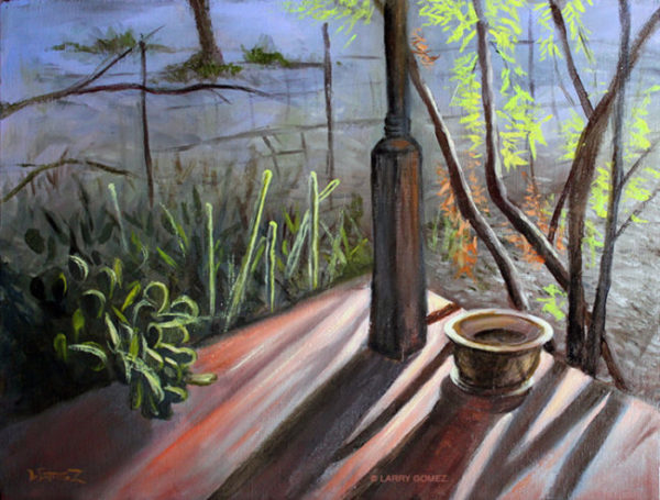 A late winter afternoon sun shining on a porch in the Tucson Arizona Iron Horse Neighborhood near Downtown. The scene shows a corner of a porch with a pot and cactus.